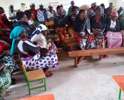 Aird Engaging Rural Women